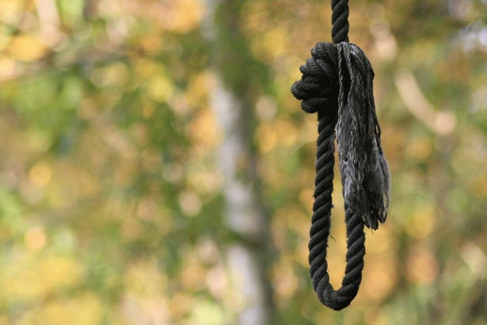 Mit einem Seil fesselten die Täter ihr Opfer an einem Baum (Symbolbild).
