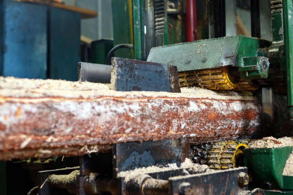 Tödlicher Arbeitsunfall! 62-Jähriger wird in Säge-Maschine gezogen
