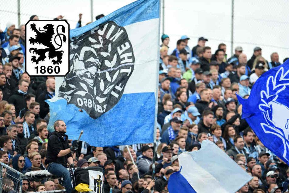 Schmankerl für Löwen-Fans: TSV 1860 gegen KSC im Free-TV!