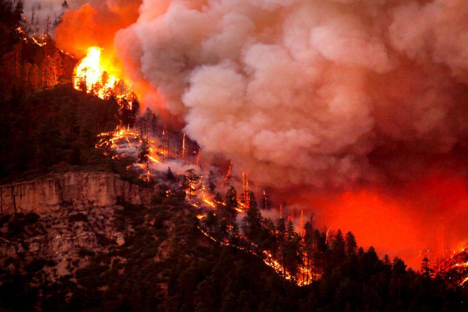 Im US-Bundesstaat Colorado müssen Menschen vor einem Waldbrand fliehen.
