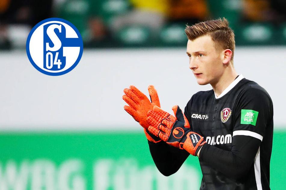 Schalke kurz vor Verpflichtung von Ex-Dynamo Markus Schubert?