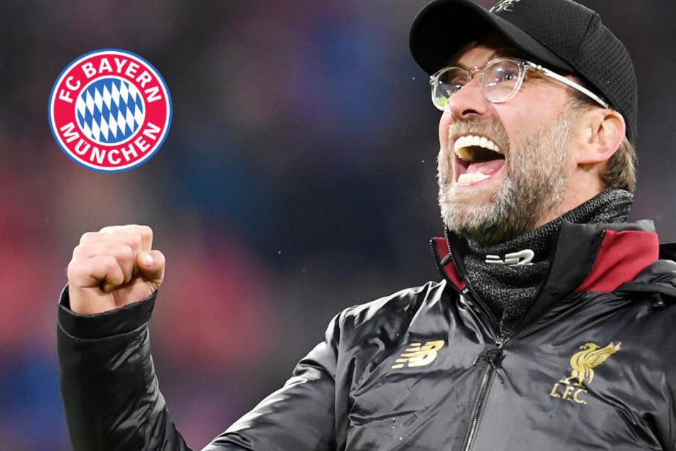 Bayern-Trainer der Höhepunkt? Coach Jürgen Klopp fühlt sich von Lob geehrt