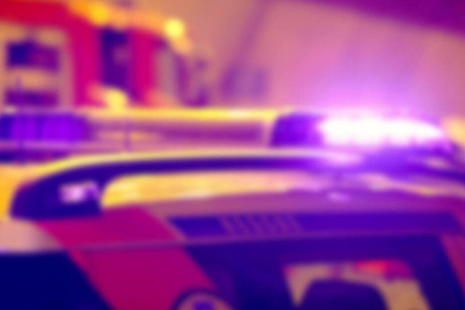 Schreckliches Familien-Drama: Vater stürzt Sohn und sich selbst von Autobahn-Brücke