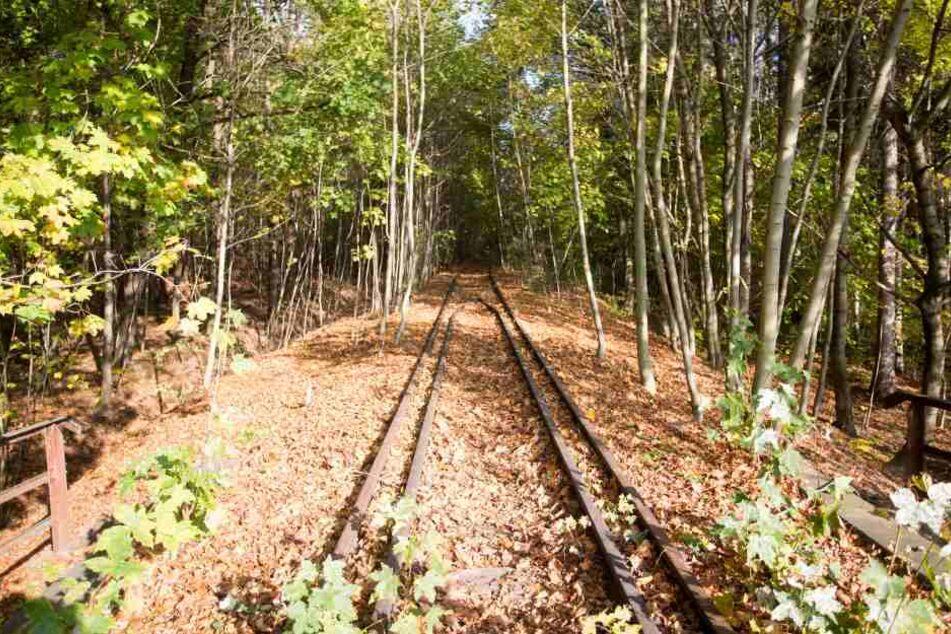 Die Gleise liegen noch, auch wenn seit 13 Jahren keine Züge mehr fahren. Aus der ehemaligen Bahnstrecke soll ein Radweg werden.