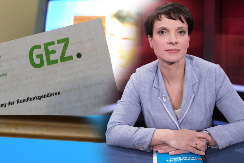 """Petry kritisiert Sommer-TV und fordert """"Sommerpause"""" für GEZ"""