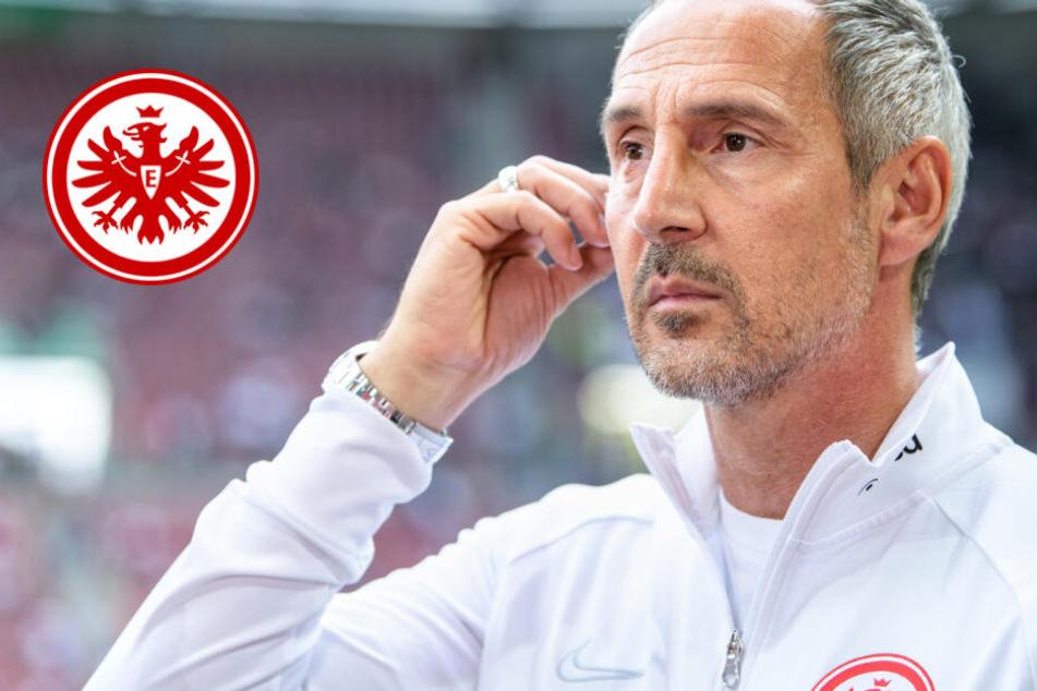 """Dickes Lob: Eintracht-Trainer Adi Hütter als """"wichtigster Mann"""" bezeichnet"""