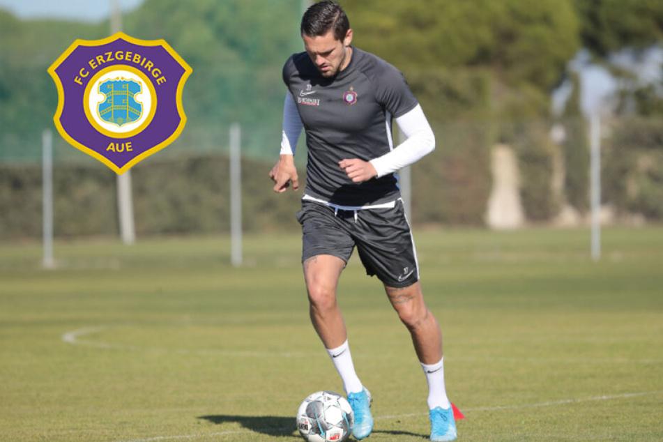 FC Erzgebirge Aue testet heute gegen Magdeburg