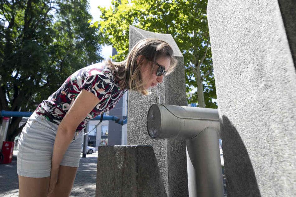 Trinkwasserbrunnen wie hier in Dresden sind beliebt bei Einheimischen wie Touristen.