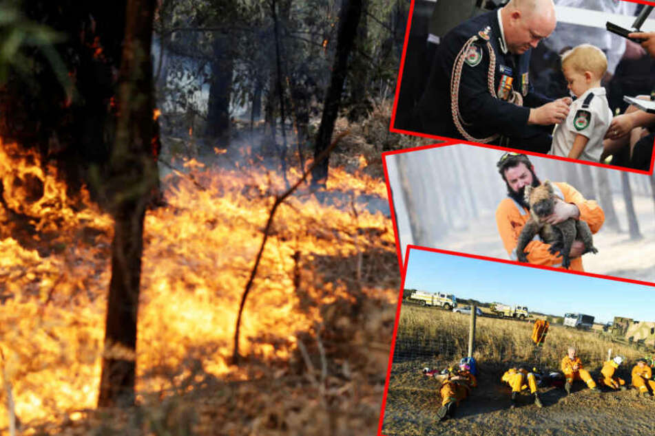 Helden in der Flammenhölle: Sie helfen im Kampf gegen die Buschbrände