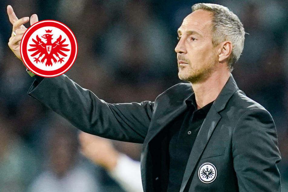 Nach Europa-Erfolg: Eintracht Frankfurt will gegen Bremen nachlegen