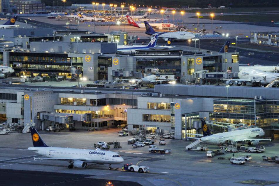 Gepäckfahrer knallt auf Flughafen gegen Bus und verletzt 14 Menschen: Das erwartet ihn jetzt