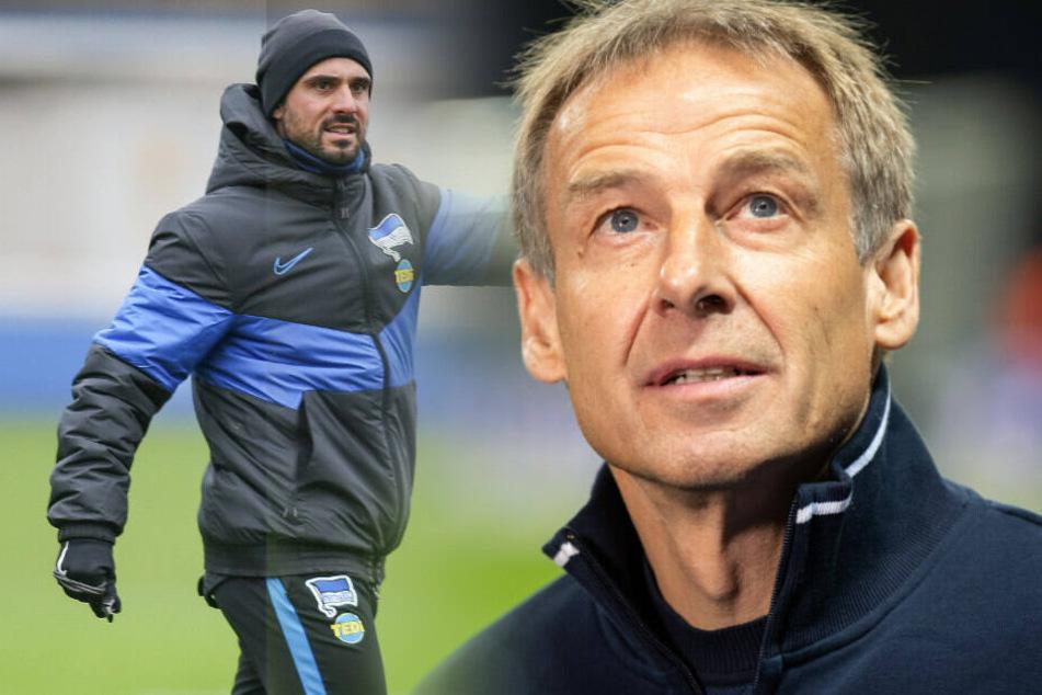 Alexander Nouri wird die nächsten Wochen der Nachfolger von Jürgen Klinsmann.