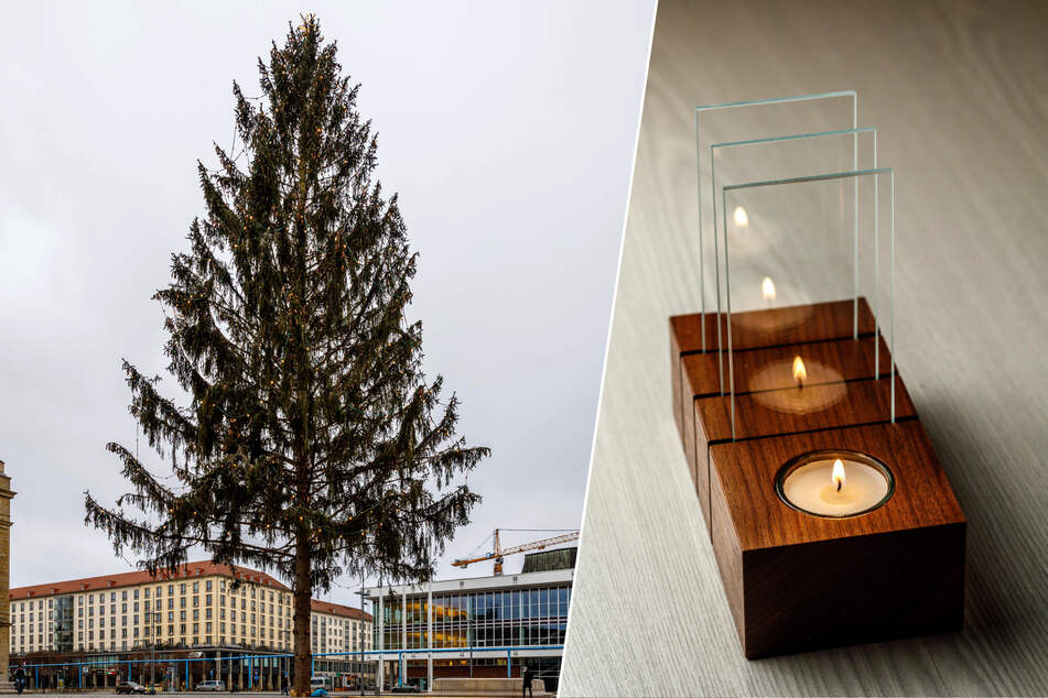 Dresden: Designerin macht die Dresdner Striezelmarkt-Fichte zu Kunst