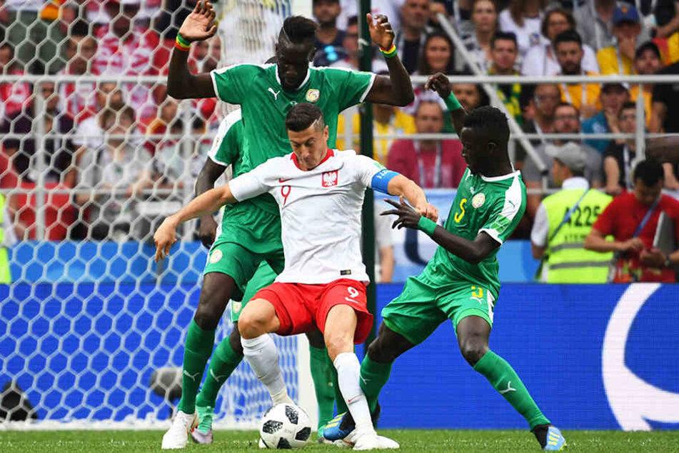 Polens Superstar Robert Lewandowski (M.) vom FC Bayern München wurde von Hannover-96-Verteidiger Salif Sane (l) und Torschütze Idrissa Gueye (r.) aus dem Senegal eng beschattet und konnte sich nur selten entfalten.