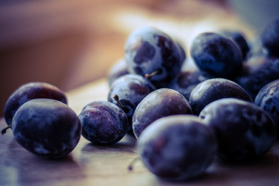 Pflaumen, Zwetschgen und Mirabellen belegen Platz 10 der beliebtesten Obstsorten der Deutschen