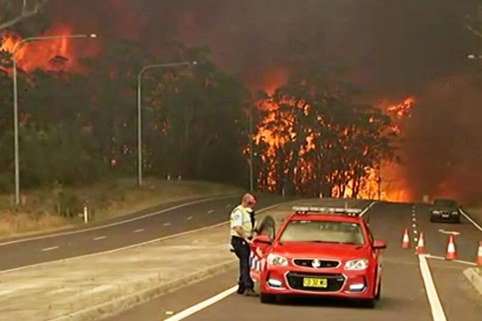 Ein Beamter sperrt den Princes Highway im Bundesstaat New South Wales auf Grund der nahenden Buschfeuer ab.