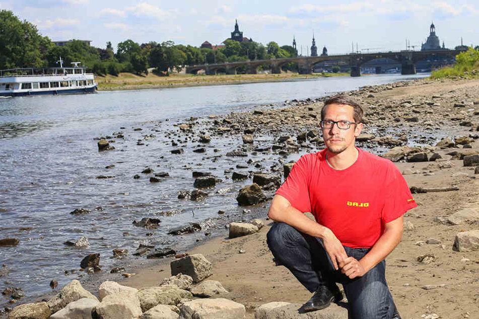 Experten warnen: Deshalb ist die Elbe so gefährlich für Schwimmer!