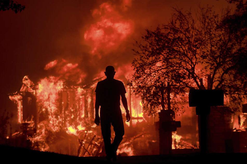 Im Norden Kalifornien brennt es lichterloh. Ein Mann beobachtet, wie Teile seines Wohnviertels in Fountaingrove niederbrennen.