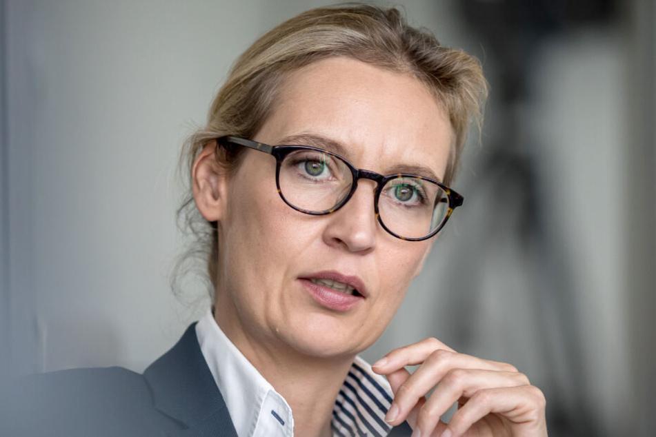 Auch gegen sie wird ermittelt: Alice Weidel.