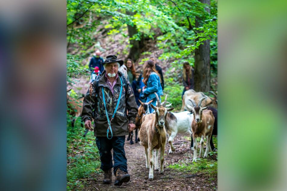 Bei Packziegen-Touren führt Natur-Pädagoge Jörg Günther (52) Naturfreunde in und durch den Wald.