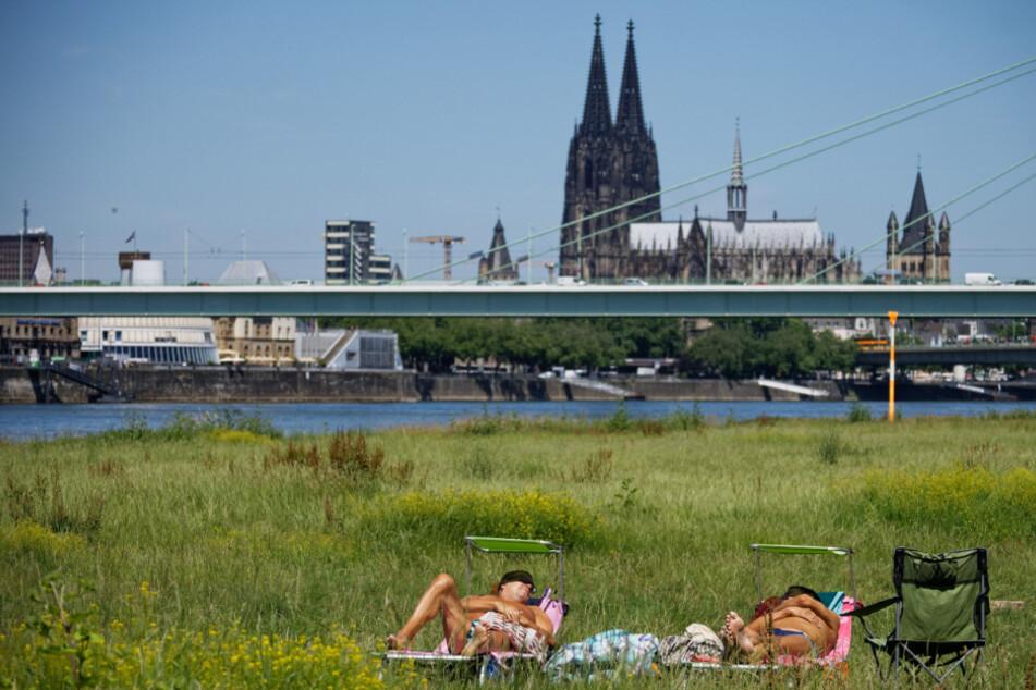 Sommer in Köln.