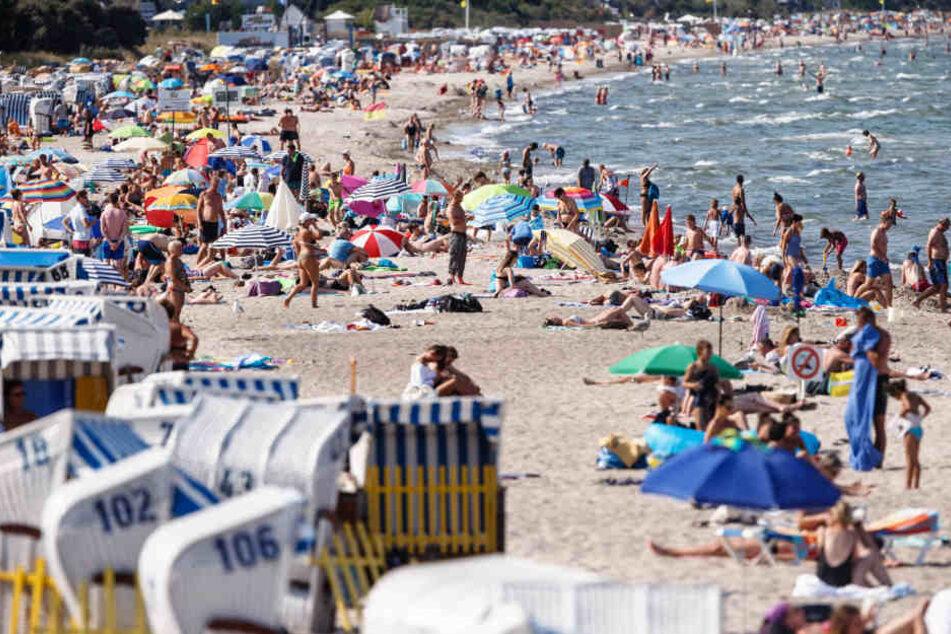 Urlauber wie hier an der Ostsee haben vor allem von den hohen Temperaturen und der vielen Sonne profitiert.
