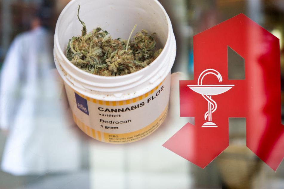 Bislang wird Cannabis nur zu medizinischen Zwecken abgegeben.