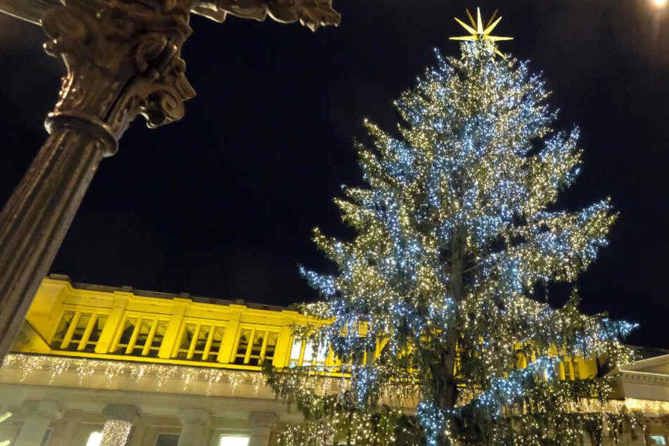 Zweiter Anlauf: Klappt's heute mit dem Stuttgarter Weihnachtsbaum?