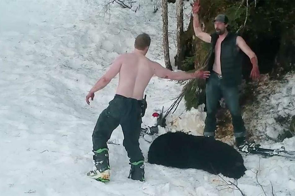 Wilderer feiern sich für feigen Bären-Mord: Doch sie freuen sich zu früh