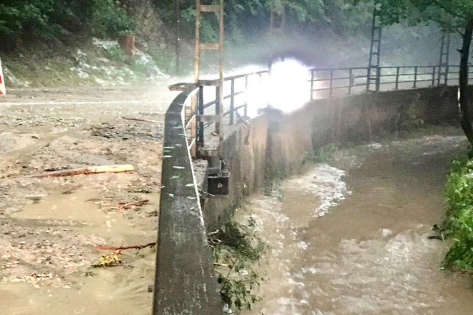 Im Kirnitzschtal kam es zu mehreren Erdrutschen.