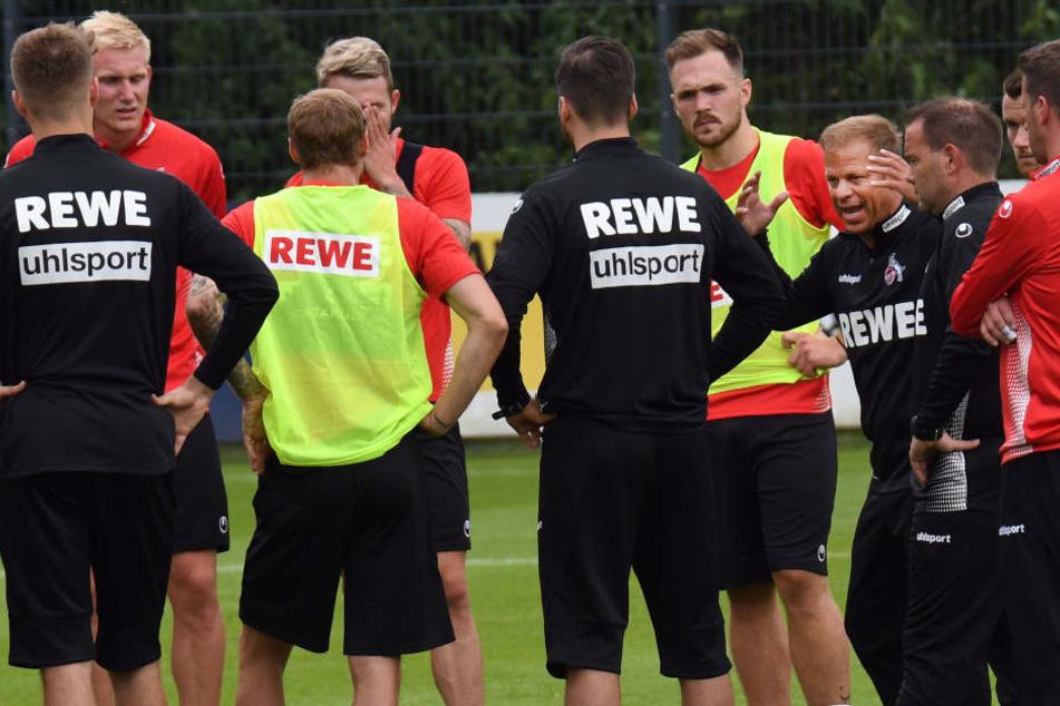 Kölns Trainer Markus Anfang (44) steht für das Projekt Wiederaufstieg ein gut besetzter Kader zur Verfügung.