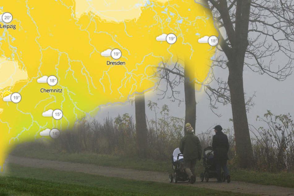 Sommer vorbei? Wochenende startet mit Nebel und Regen in Sachsen