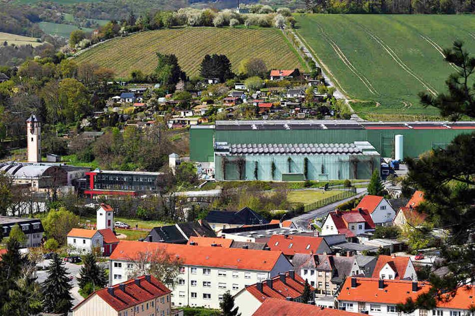 """Der Hauptsitz des Unternehmens """"Rotkäppchen-Mumm"""" in Freyburg."""