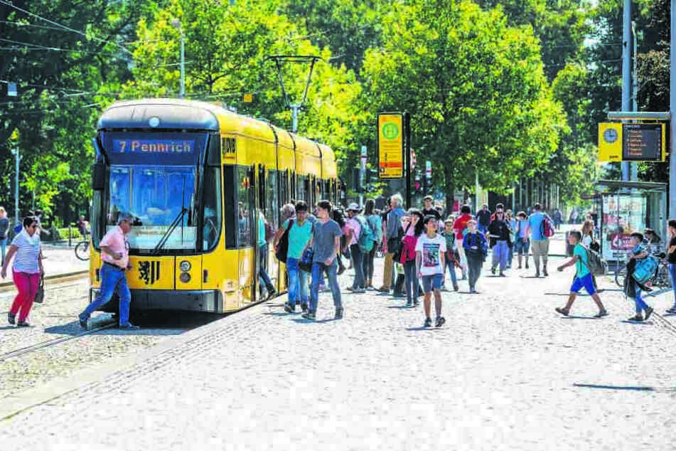 So viele Fahrgäste wie nie, so beliebt wie nie: Die DVB schwimmen auf einer  Erfolgswelle.