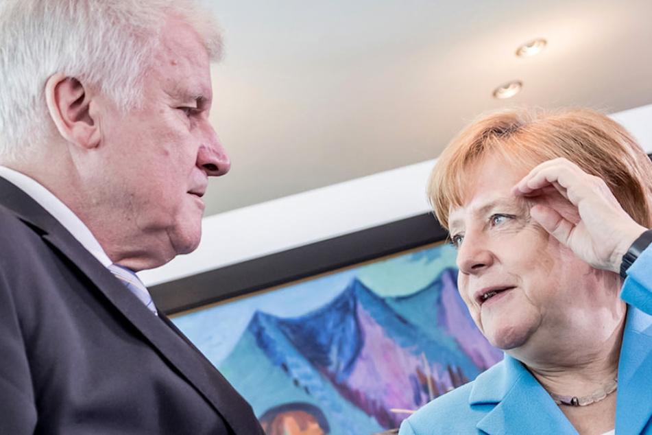 Der Asylstreit von Bundesinnenminster Horst Seehofer (68, CSU) und Kanzlerin Angela Merkel (63, CDU) zieht weite Kreise.