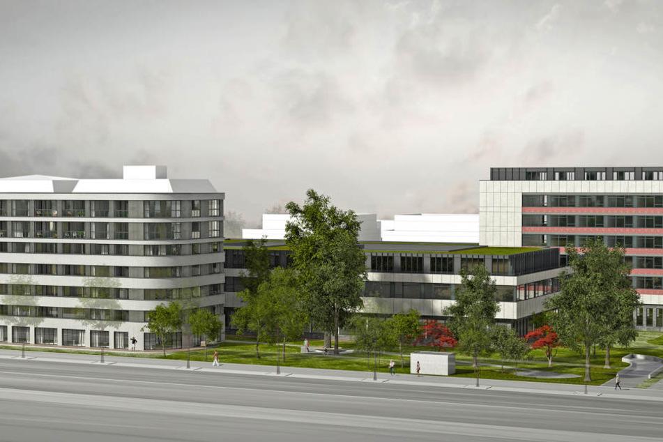 """""""Bei der Lage darf man nicht erwarten, dass der Quadratmeter für 5 Euro zu haben ist"""", sagt Architekt Peter Homuth."""