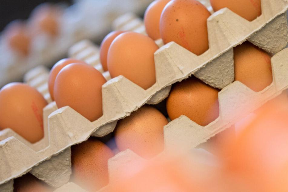Achtung! Wenn Ihr diese Eier daheim habt, gebt sie sofort zurück!