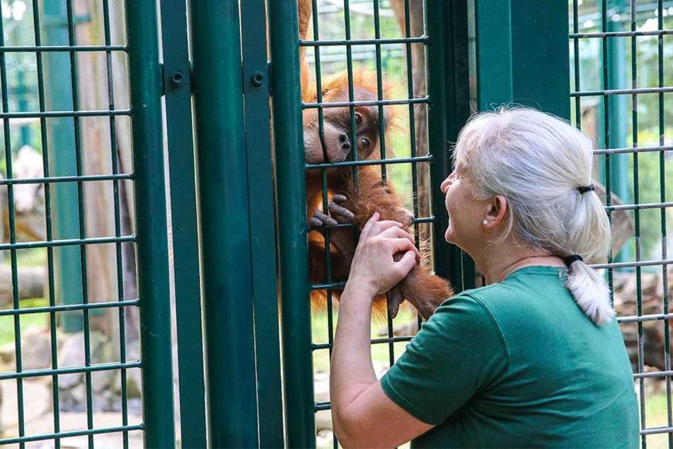 Tierpflegerin Sylvia Pohle (56) mit dem kleinen Dalai (3).