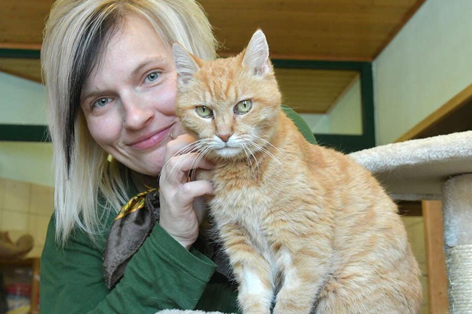 """Tierpflegerin Madlen Wunderlich (34) mit Katze """"Omi"""" (13)."""
