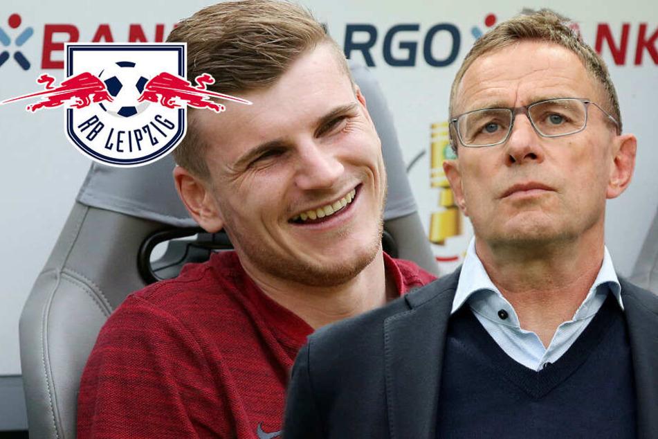 """RB Leipzig: Scharfe Kritik für Rangnick-Aussage über Werner! """"Unterschwellige Androhungen"""""""