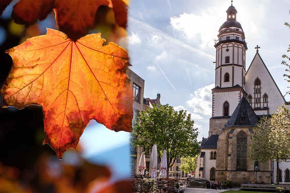 Die erste Novemberwoche wird noch mal richtig angenehm in Leipzig.