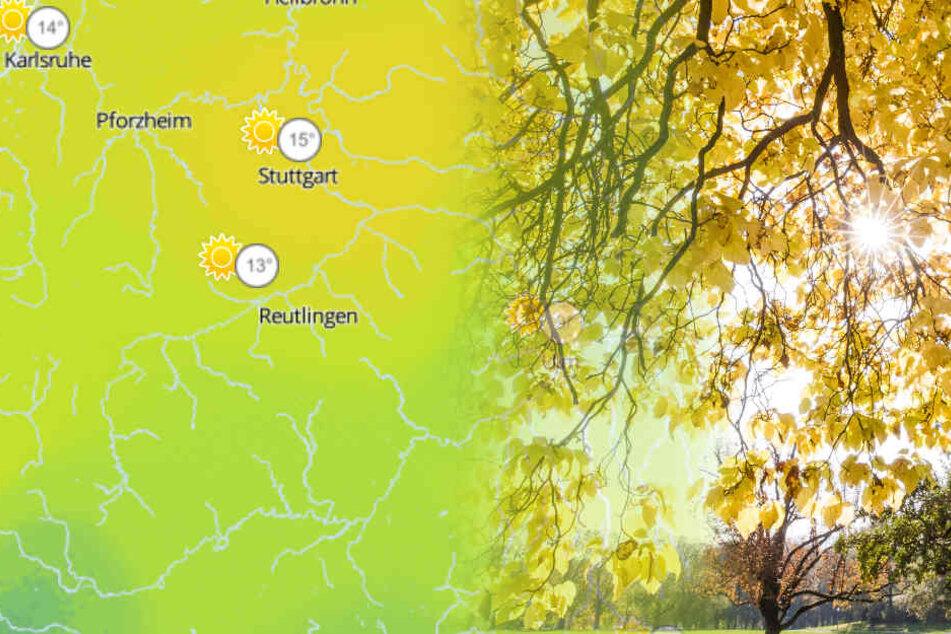 Kommt jetzt der Frühling? Herrliche Wetteraussichten