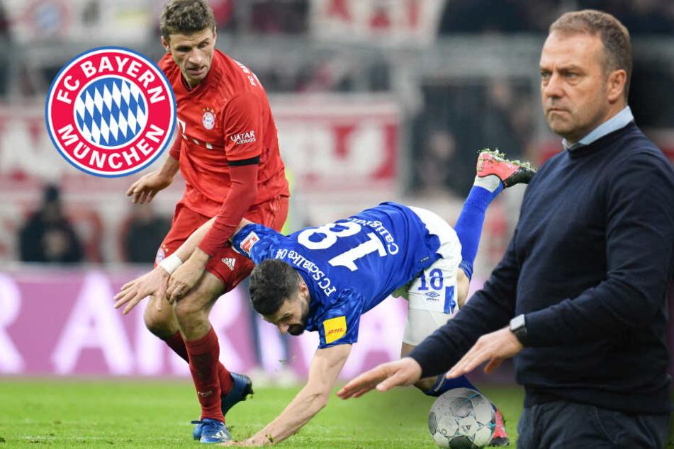 FC Bayern im Pokal-Viertelfinale: Sofortiger Spielabbruch bei Hass-Plakaten?
