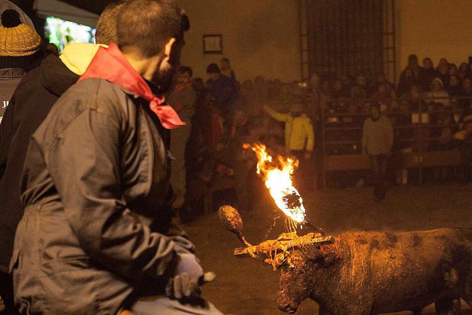 """Was für ein grausiges Ritual - das """"Toro Júbilo""""."""