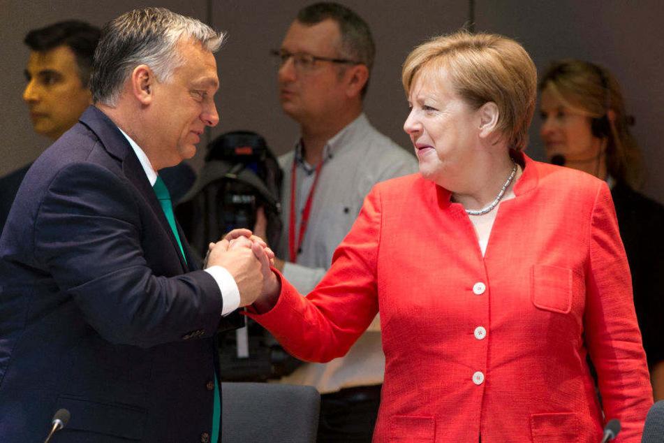 Angela Merkel begrüßt beim EU-Gipfel Ungarns Ministerpräsident Viktor Orban.