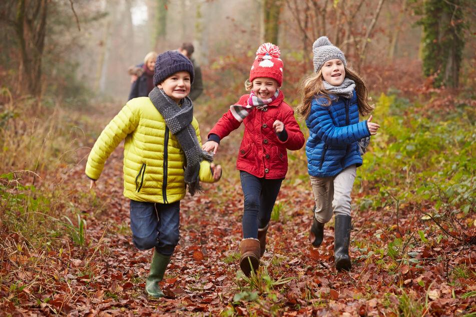 Rund um den Stausee Oberwald gibt es zahlreiche Waldwege zum Spazierengehen.