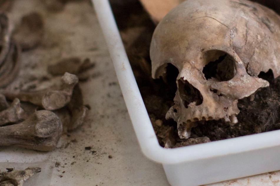 Ein Passant hatte die menschlichen Überreste entdeckt. (Symbolbild)