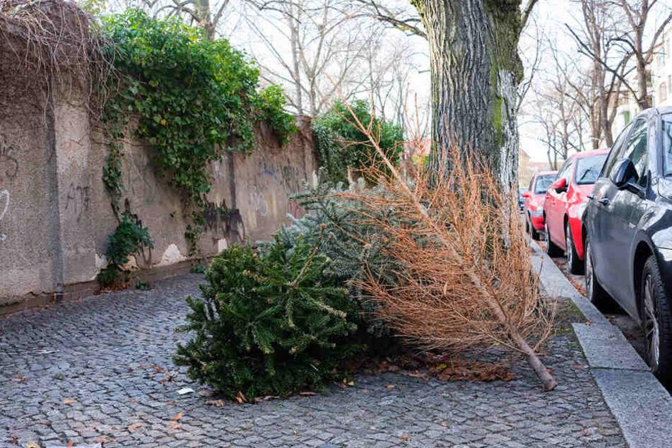 So wie hier in der Stubenrauchstraße am 9. Januar liegen vielerorts noch Weihnachtsbäume in Berlin.
