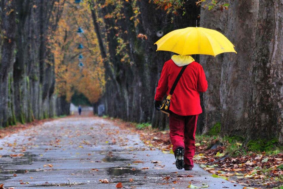 Der Regenschirm war im November unser ständiger Begleiter. (Symbolbild)