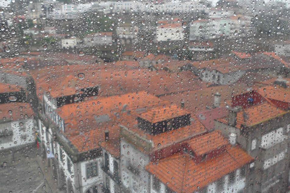 Ein Einsatz von veredelten Verbundgläsern kann sich trotz höherer Anschaffungskosten an der Wetterseite von Häusern auf Dauer auszahlen.